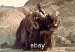Gentle Giant Star Wars Tusken Raider On Bantha Statue Customer